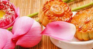 Top 14 Thương hiệu bánh trung thu cao cấp ngon và chất lượng để làm quà tặng