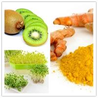 Photo of Top 5 Thực phẩm tốt cho sức khỏe ngon nhất vào mùa mưa