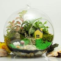 Photo of Top 7 Loại cây cảnh đẹp nên trồng trong nhà