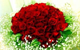 Photo of Top 8 Loài hoa ý nghĩa tặng bạn gái vào ngày Valentine